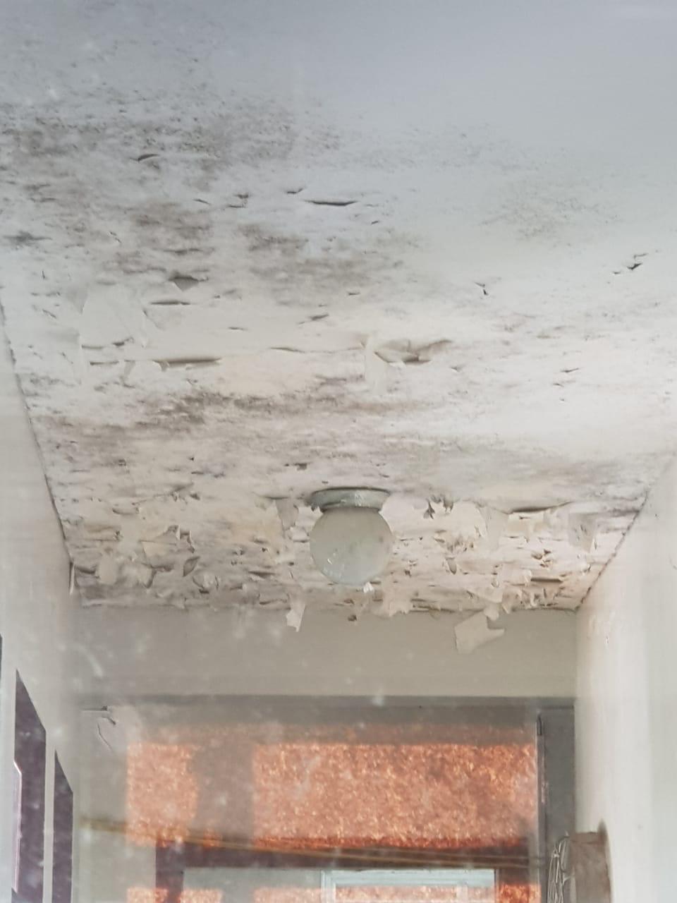 Paredes do teto do Hemonúcleo está manifestada com mofos