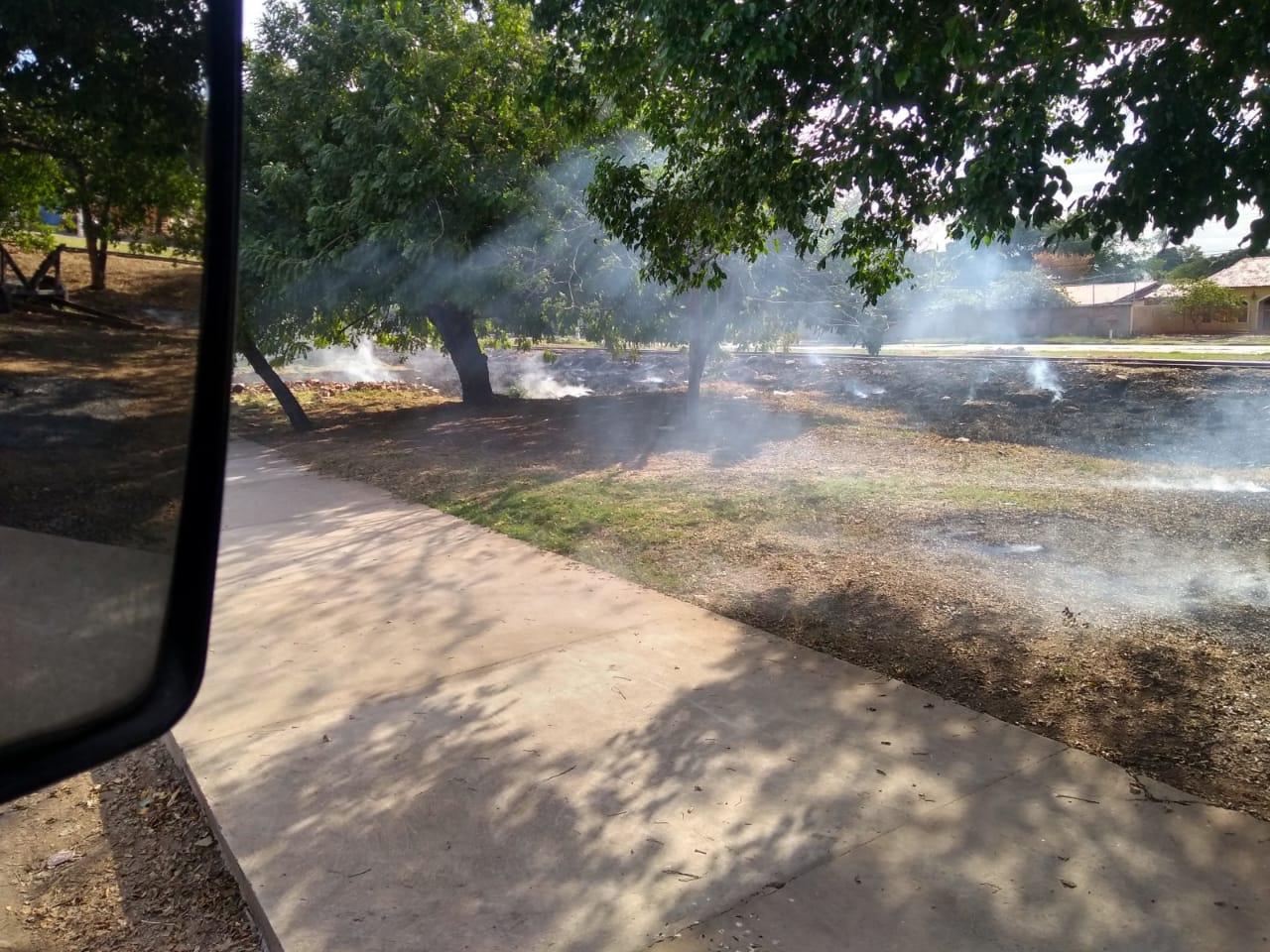 Incêndio em vegetação na área urbana