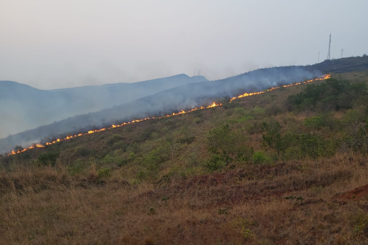 O fogo da madrugada deixou muita fumaça na região.